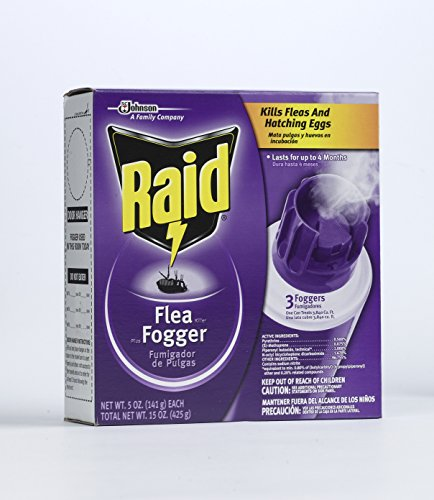 best flea fogger raid flea fogger