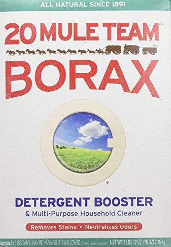 borax for fleas